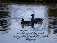 Romantic Photo Print 'Along Side of You Forever' from www.lori.fm